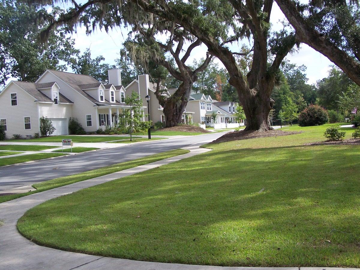 Sidewalks and live oak trees